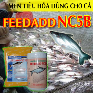 FEEDADD NC5B