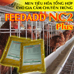 FEEDADD NC2 PLUS